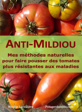3 choses savoir sur la culture en serre - Faire pousser des tomates sur un balcon ...